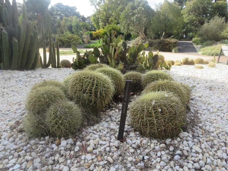 Geelong Botanic Gardens Walking Maps