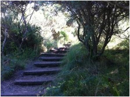 Bushranger's Bay Trail - Walking Maps