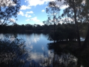Bendigo's Flora Hill & Kennington Reservoir - Exercise walk