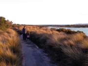 Edwards Point walk, Bellarine Peninsula