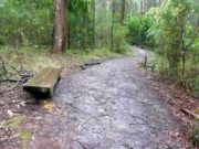 Silvan Reservoir Nature Trail