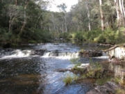 Alpine National Park: Moroka Gorge Walk