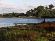 Lake Marma Loop - Murtoa