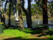 The Park - Wimmera River Walk No 1 - Dimboola
