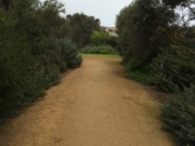 Warrnambool- Port Fairy Rail Trail