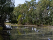 Yarriambiack Creek Walk Number 1 - Warracknabeal