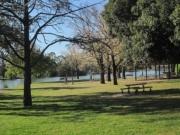 Bendigo's Best Tourist Attractions