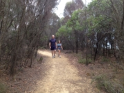 Anglesea Heath Walk, Point Addis to Anglesea