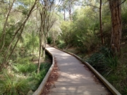 Bellbird Dell
