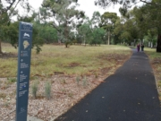 Royal Park 'best bits' loop walk, Parkville