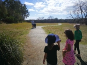 Rhyll Inlet wetlands walk, Phillip Island