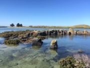 Port Fairy walk to Griffiths Island