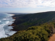 Fingal to Cape Schanck Track