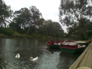 Studley Park Boathouse - Bushland Circuit Trail