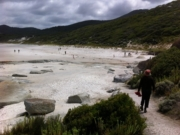Tidal River to Squeaky Beach return